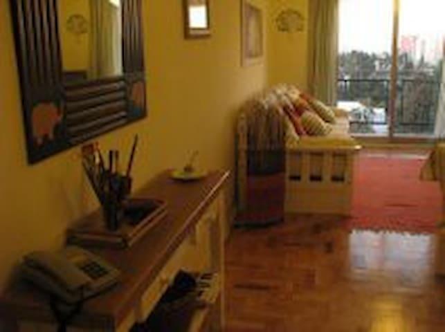 LUMINOSO Y ACOGEDOR DEPARTAMENTO EN VICENTE LOPEZ - Vicente López - Appartement en résidence