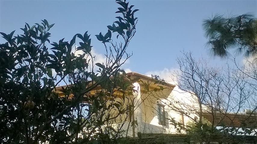 Stromboli nel bosco - Camera Felice - Lipari - Villa
