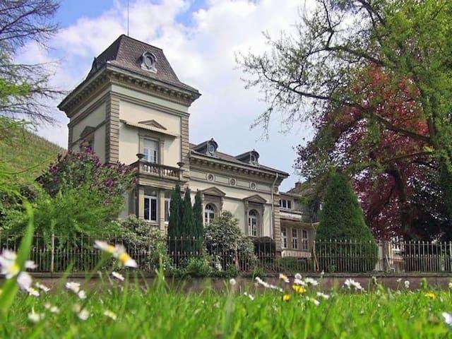 Nostalgie pur: Wohnen in einer Jugendstil-Villa - ゲンゲンバッハ - 別荘