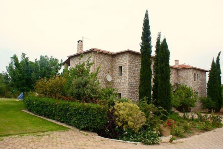 Villa Leon - Loukissia - Villa