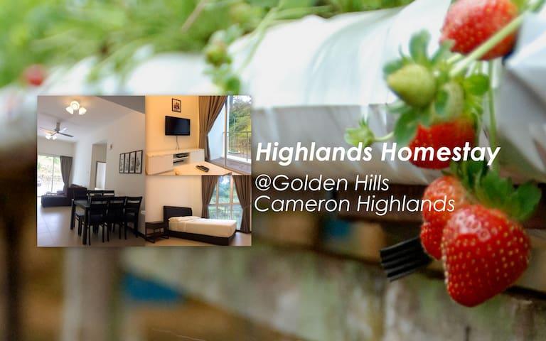 Highlands Homestay @Golden Hills Cameron Highlands - Brinchang - Appartement
