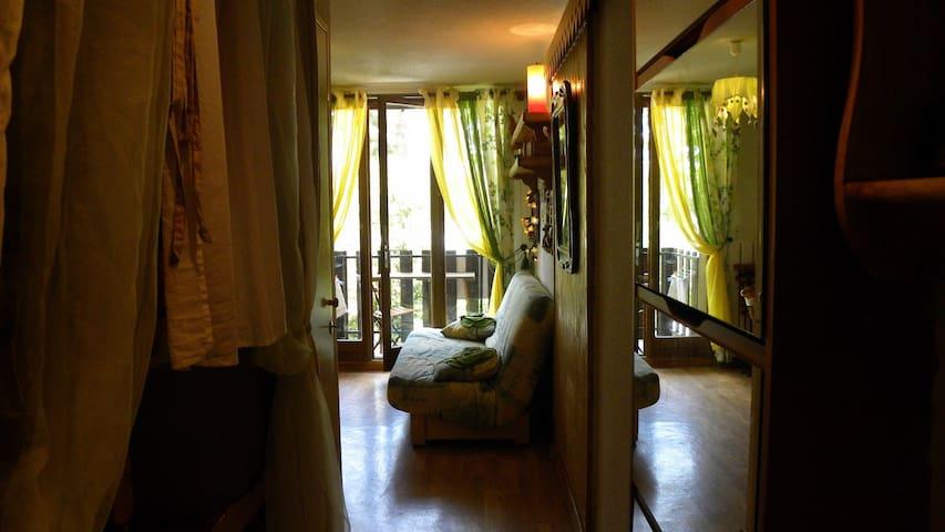 Joli Studio avec Balcon à Montclar - Montclar - Appartement
