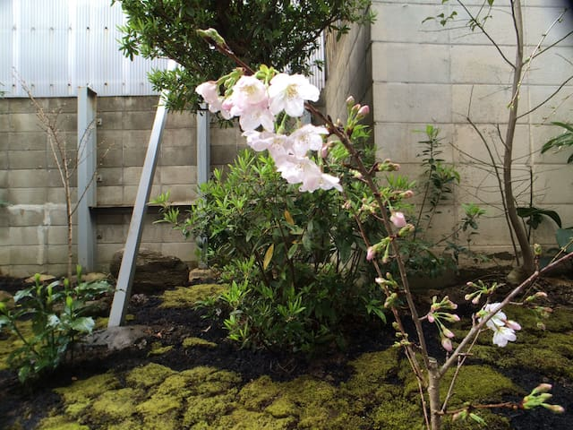 Quiet House with a Japanese Garden - Kobe - Apartment