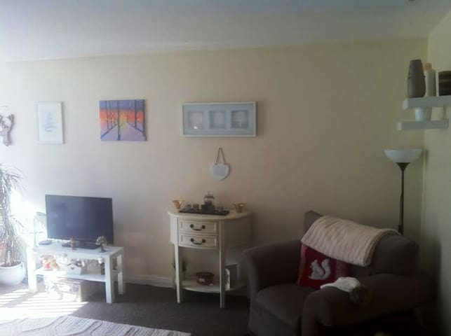 Friendly Cosy Apartment located Close to Belfast - Belfast - Apartment