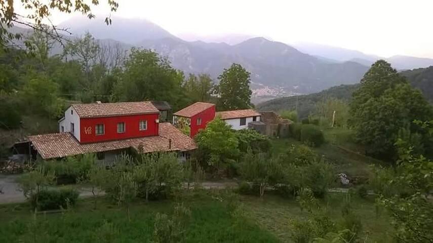 Fantastico tuffo nella natura - Province of Cosenza - Hus