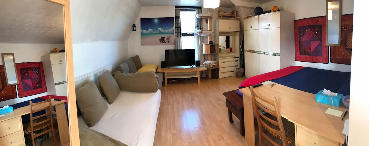 Shared studio double bed or sofa - Manchester - Daire