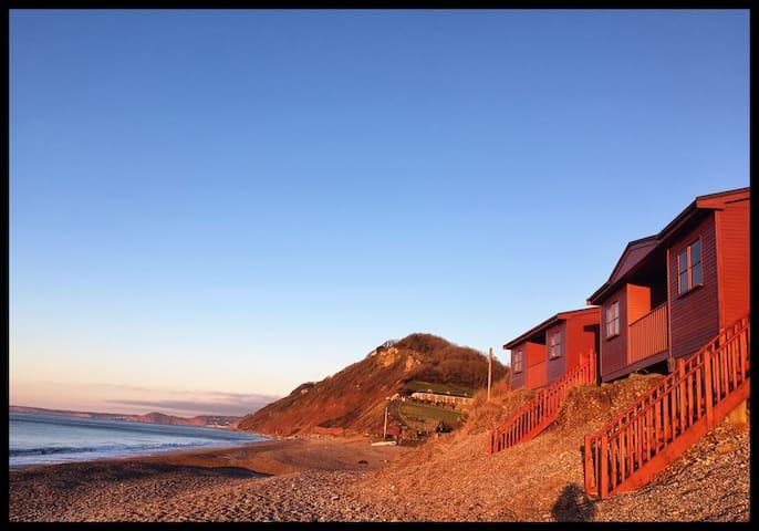 'Curlew' Beach chalet East Beach Branscombe, Devon - Branscombe  - Chalet