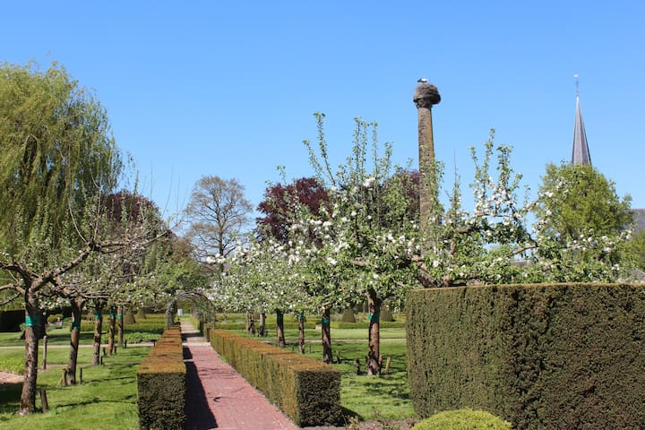 Cottage / B&B de Bongerd (the Orchard) - Voorst Gem Voorst - Cabaña