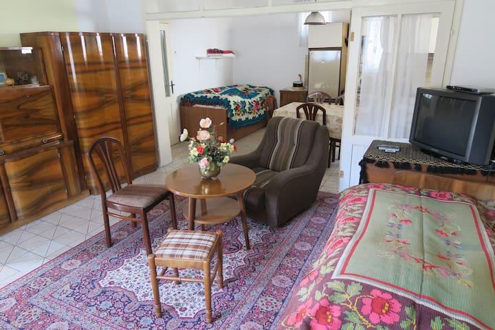 Ethno Apartment, sehr ruhig, Klima - Aradac - Apartemen