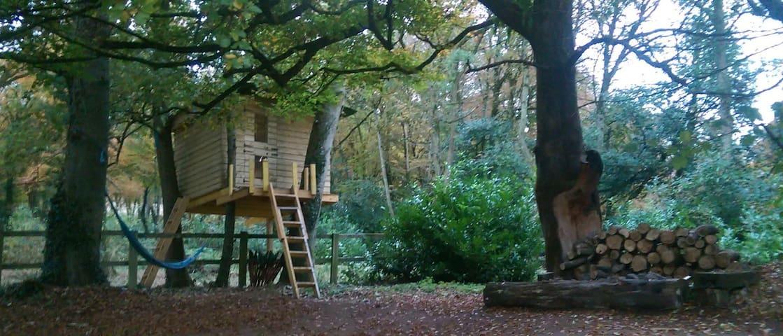 Heathfield Treehouse - Glamping - Kilmeedy - Ağaç Ev