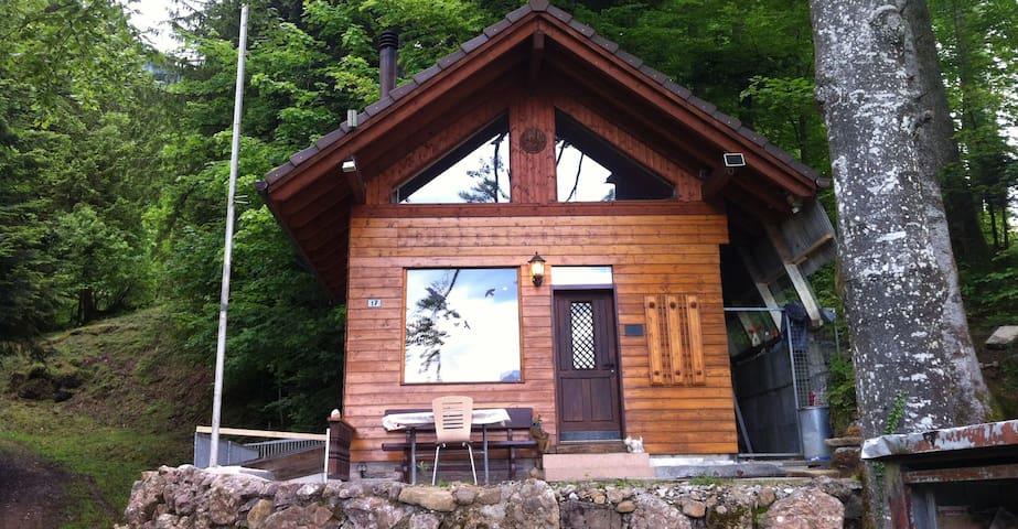 Small mountain Cabin whith a million dollar view - Arth - Casa de campo