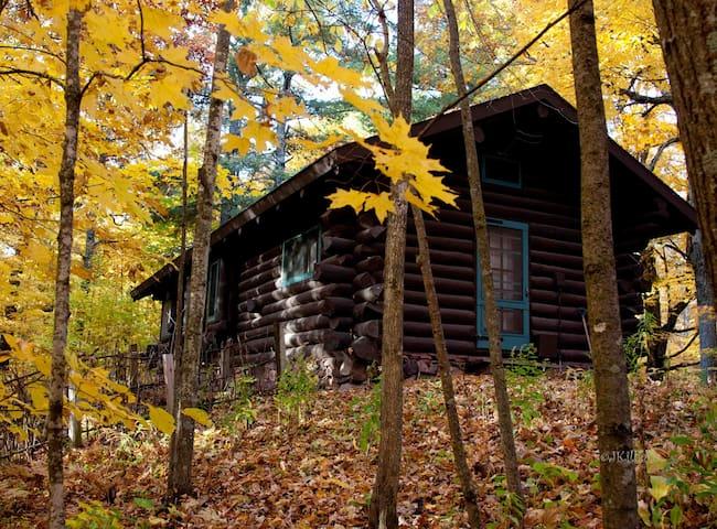 Hunt Hill Log Cabin - Sarona - Blockhütte