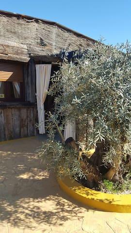 Mini Finca in Andalusien bei Granada - Loja - Stuga
