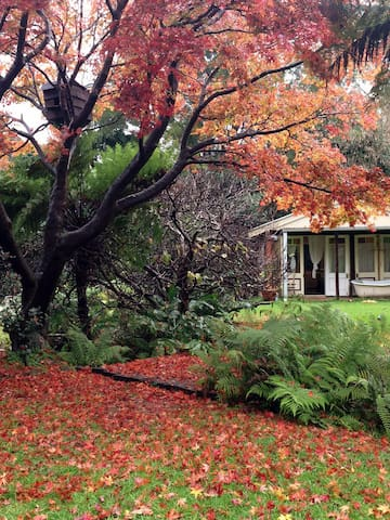 New Garden Studio with Private Courtyard and Creek - Thirroul - 民宿