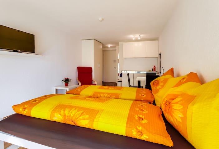 Apartment mit Kochnische und Bad - Lucerne - Gjestehus
