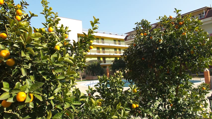 Friendly and comfortable Apartment with Wifi, AC - Kemer - Appartement