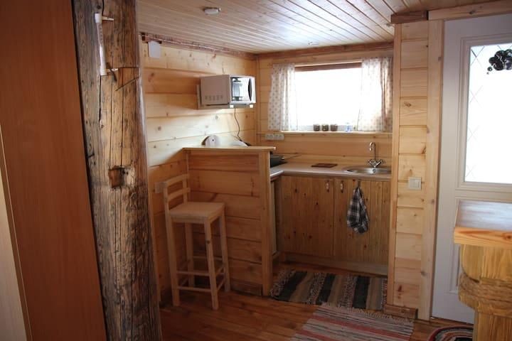 Гостевой дом с сауной на берегу Святого озера - Kostroma - Hotel ekologiczny