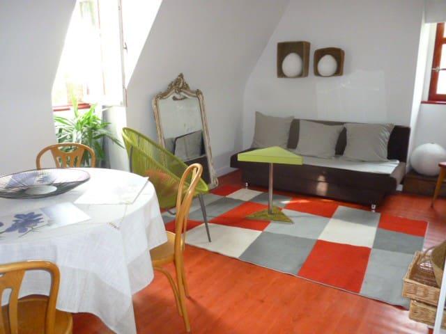 Gite au Bord du Loir - Villevêque - Lägenhet
