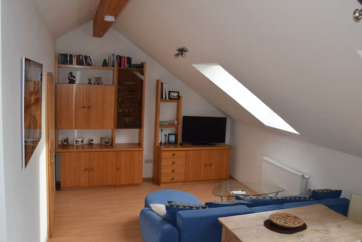 Small top floor apartment in Unterallgäu - Rammingen - Selveierleilighet