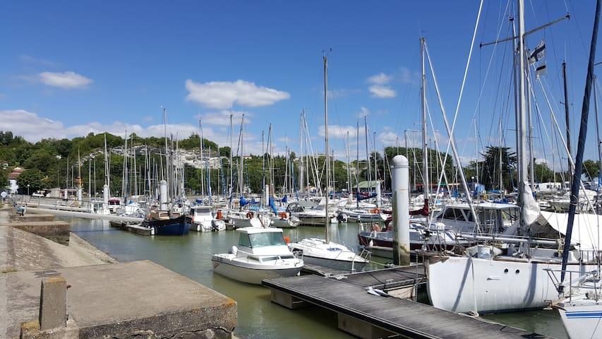 """Escapade entre """"Terre et Eau"""". - Mortagne-sur-Gironde - Leilighet"""