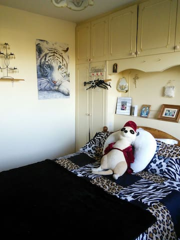 Comfy double bed for 1 or 2 - Carlow - Huis