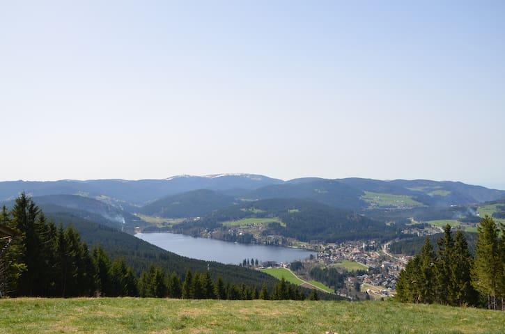 Schöne Ferienwohnung Panoramablick - Lenzkirch - Квартира