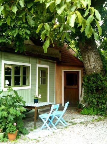 Litet krypin under valnötsträdet - Visby - Ev