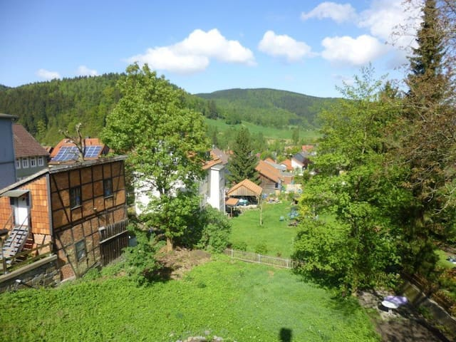 House At The Forest - Langelsheim - Apartamento
