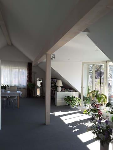 Dachgeschossapartment in Starnberg nahe am See - Starnberg - Appartement
