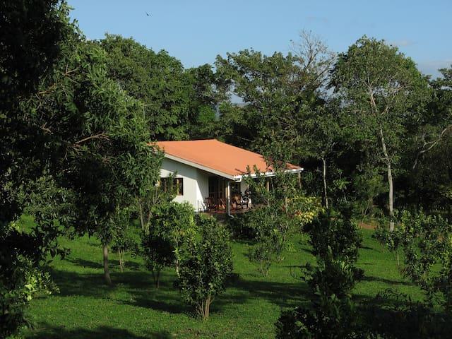Cute House In Peaceful Location - Masatepe - Ev