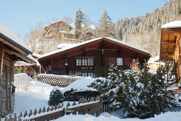 A CHARMING SWISS FAMILY CHALET - Lauterbrunnen - Leilighet