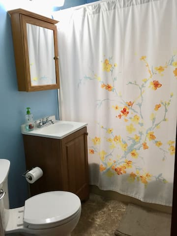 Private bedroom in small & cozy home! - Minneapolis - Huis