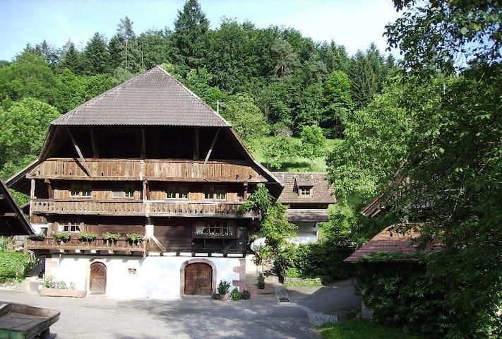 Oberer Schwärzenbachhof - Senner - Gengenbach - Appartement