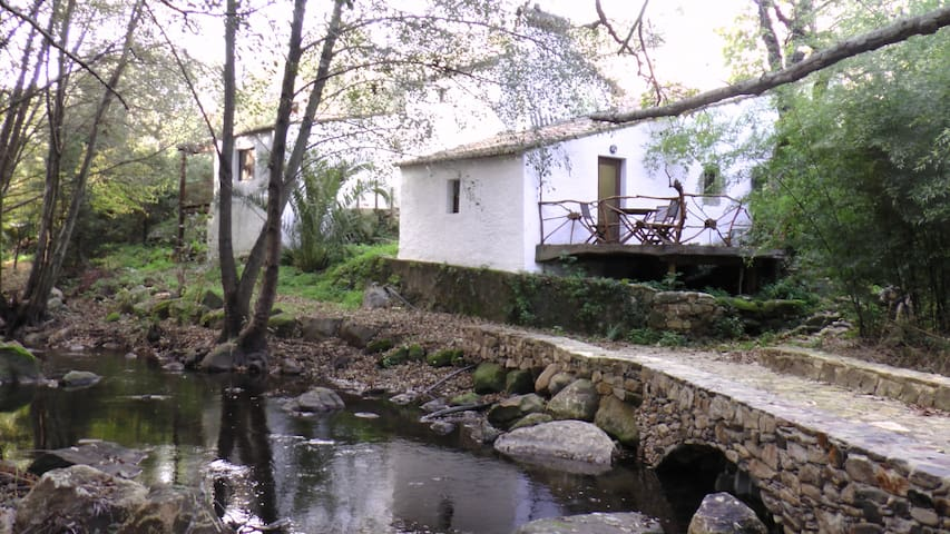 Marvao - Stay in Our Beautiful Restored Mill - Marvão - Hus