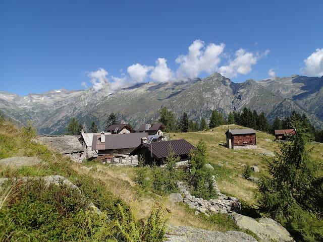 Mountain cabin, back to nature experience. - Ceppo Morelli - Blockhütte