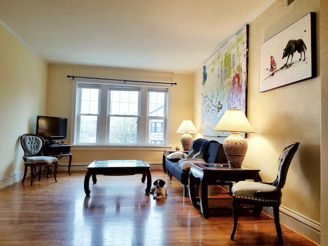 Amenities,Modern, Bright, Big 3BR condo WashU/Loop - University City - Appartement