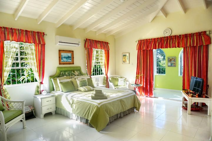 Spectacular Oceanview Retreat w/Wi-Fi, CableTV, AC - West Terrace - Huoneisto