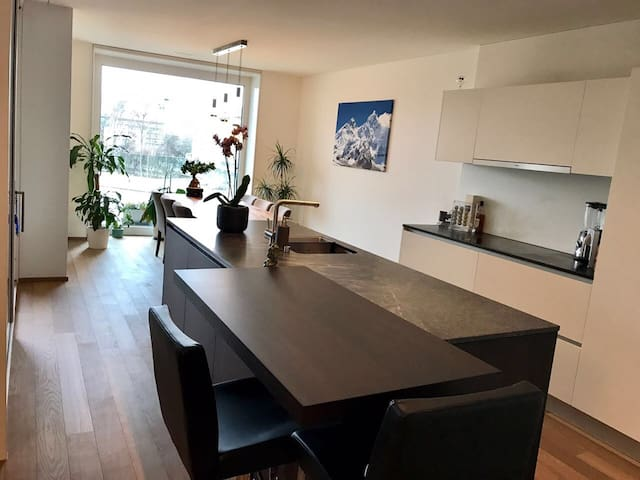 Room with balcony in high standing apartment - Zürich - Huoneisto