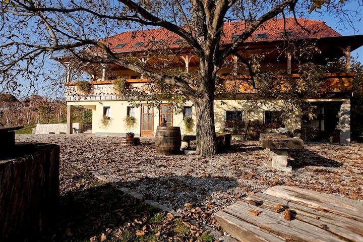 Vineyard cottage Majzelj, room 2 - Šentjernej