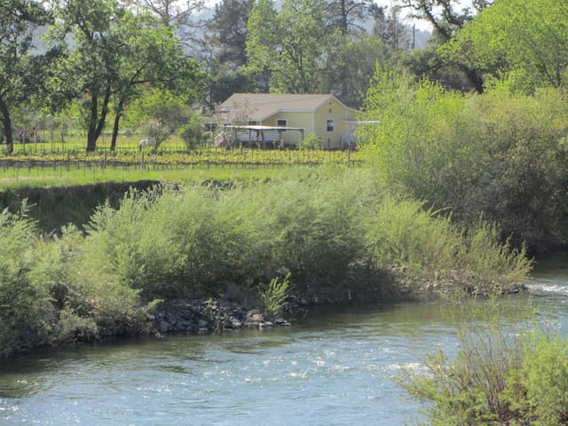 Wine Country Home on 5 Acres  - Geyserville