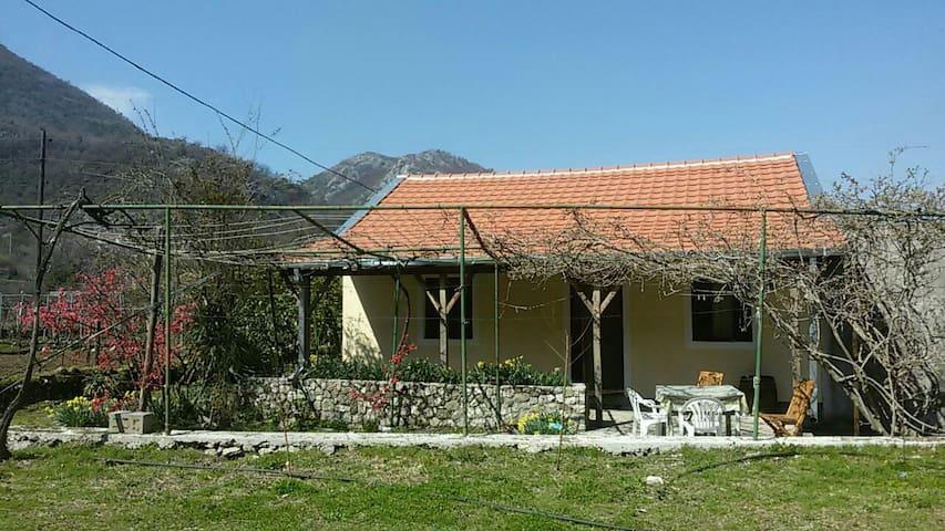 Charming guesthouse near Skadar lake - Godinje - Hus
