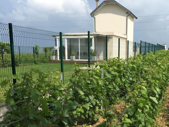 maison / gite a Epernay en champagne - Épernay - Hus