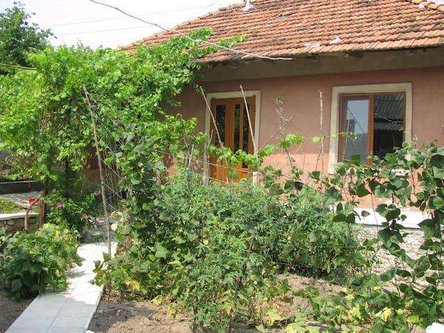 House with garden in center city of Orhei - Orhei - Casa