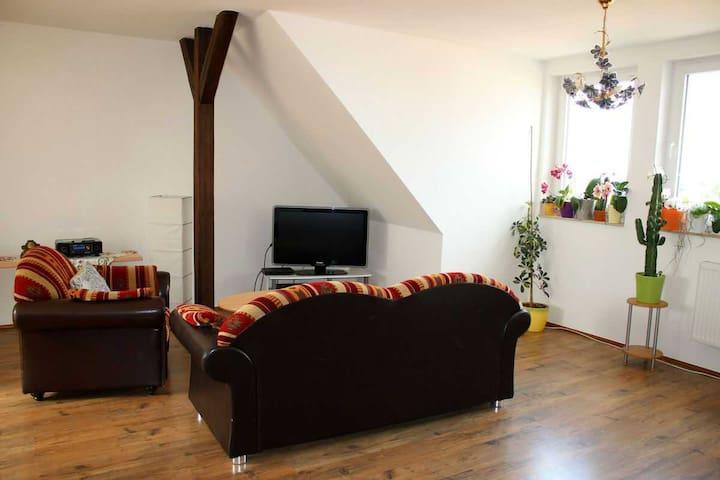 Gr. 4R. Apartment, W-LAN, Dachterrasse - Magdeburgo - Appartamento