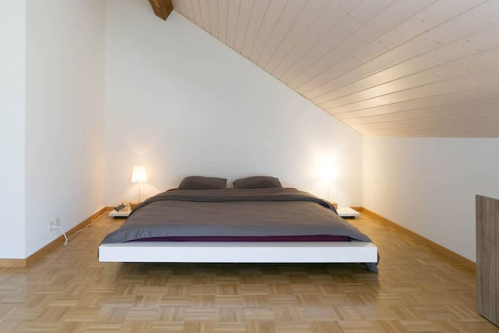 Center : Big room in attic apartment - Женева - Квартира
