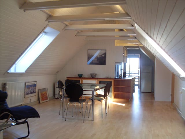 Spacious apartment. Proximity to nature and town. - Horsens - Daire