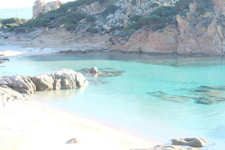 Slow Travel_ Loft SeaView_ DayTripBoat excursion - La Maddalena - Loft