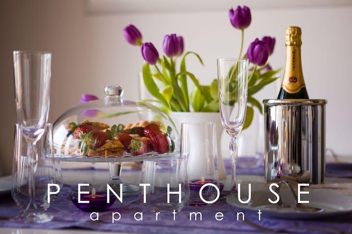 PENTHOUSE IN THE CITY & PARKING - Maribor - Lägenhet