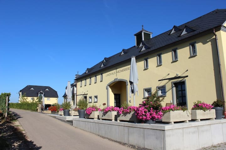 5*Style Appartements mit traumhaftem Panoramablick - Oberbillig - Gjestehus