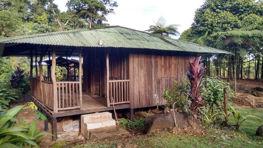Paradise Falls Private Mountain Cabins - Guapiles - Kabin